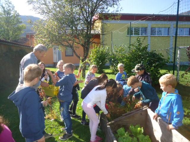 Schulgarten4.jpg
